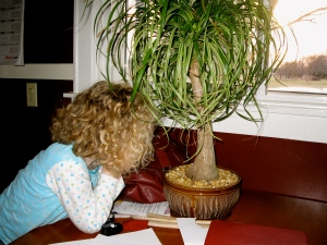 "Miriam under the ""Thinking Tree"""