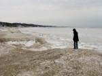 the shoreline 2008